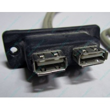 USB-разъемы HP 451784-001 (459184-001) для корпуса HP 5U tower (Бийск)